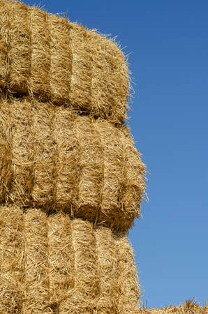 Rectangular bales of dry hay against the blue sky. Storage of dry herbs for feeding cows and other animals. Yellow straw in rectangular bales. Stock fotó