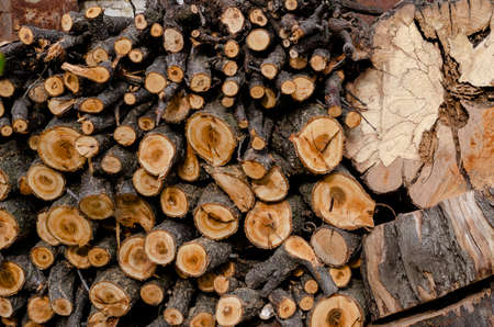 Sawn timber yards folded against the wall. Dry quince tree sawn into logs for the furnace in the stove or fireplace. Without people.