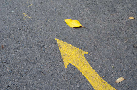 Yellow arrow painted on asphalt road. Sign among fallen leaves. View from above at an angle. Stockfoto
