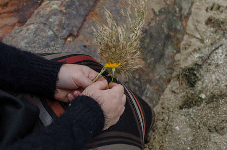 Concept of harmony, tenderness, romance. Middle-aged woman holds small field flower and reed branch. View from above at an angle Stock fotó