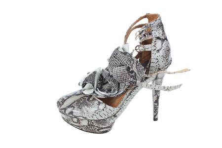 Luxury snake leather women shoe isolated on white background Stock Photo - 14756360