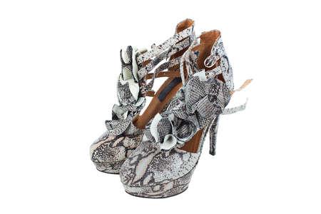 Luxury snake leather women shoes isolated on white background Stock Photo - 14729682