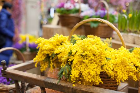 yellow flowers in a basket spring summer