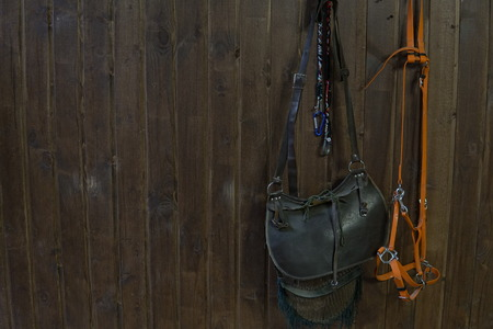 saddle horse reins on Brown wooden wall 写真素材