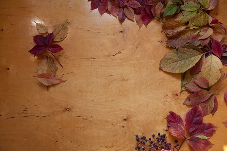 Red and yellow autumn leaves on wooden background