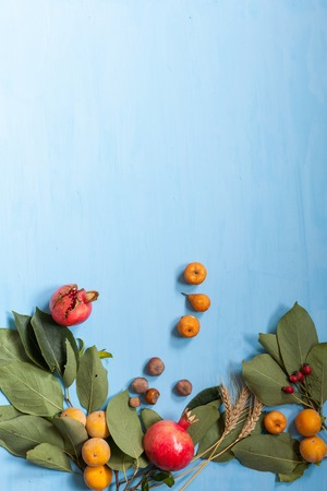 autumn fruits, nuts, pomegranate on blue background