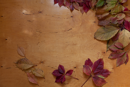 autumn yellow and Red leaves wooden background