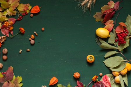 autumn red and yellow leaves fruit nuts fall background Archivio Fotografico