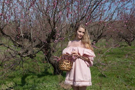 beautiful blonde woman in a flowered Peach Garden in spring with pink flowers