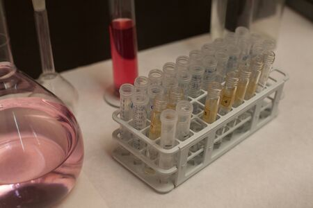 Test tubes and containers for experiments in the laboratory