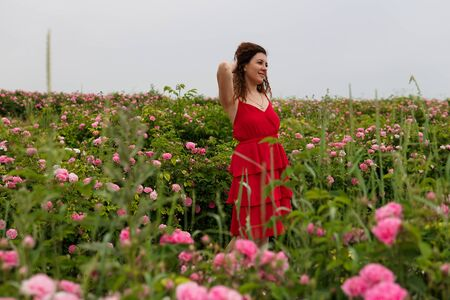 Beautiful woman in red dress on a field of blossoming roses Stock Photo