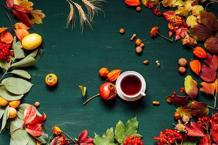 autumn background red and yellow leaves nuts fruit Stockfoto - 132100498