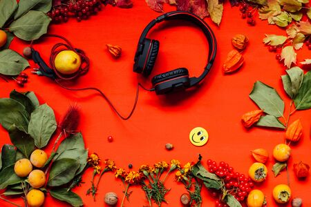 autumn red and yellow music headsets leaves fruit
