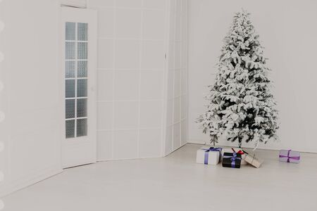 Green Christmas tree with Christmas gifts in white room