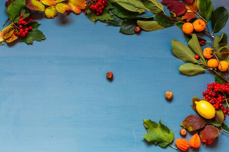 Red and yellow autumn leaves fruit nuts on a grey background 1 Banco de Imagens