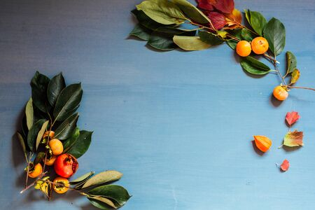 yellow and Red fall leaves persimmon pomegranate on a grey desktop Stock Photo