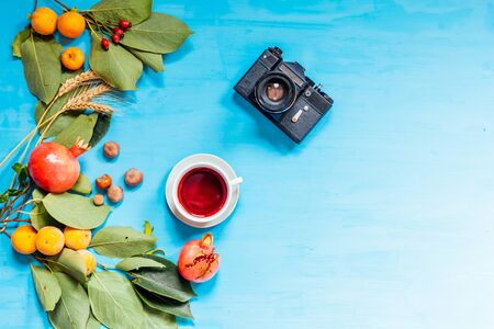 camera coffee cup fruit nuts on a blue background