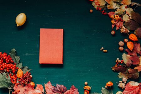 autumn background book diary yellow and Red leaves of berries fruits nuts