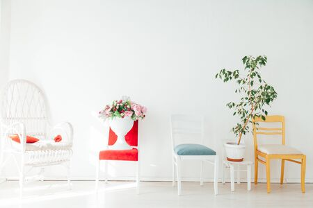 different chairs with flowers and plants in the white room