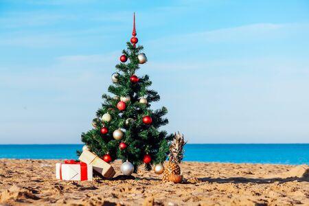 Christmas tree on tropical beach holidays winter