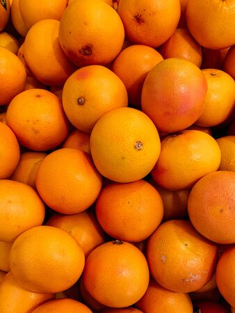 lots of ripe orange fruit to eat as a background