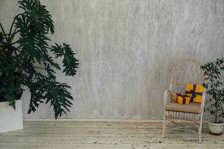 chair with gifts with home plants in the interior of a vintage gray room