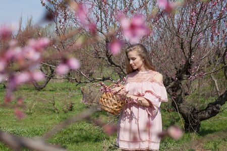 Beautiful blonde woman in pink dress collects flowers in flowergarden