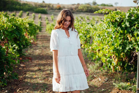 beautiful fashionable woman in a dress collects grapes in a vineyard 免版税图像
