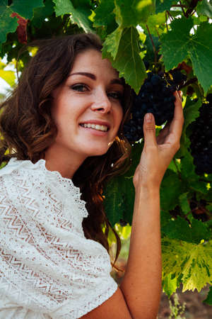 Woman picks up grapes with her hands to wine