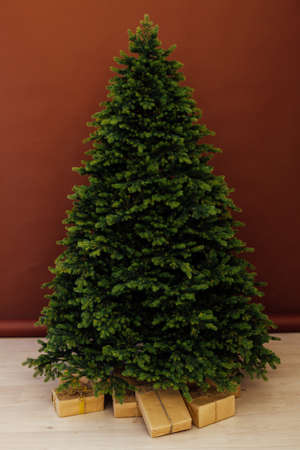 Christmas tree pine without decor with gifts for the new year