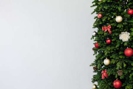 branches of the Christmas tree pine place for the inscription of the new year white background 免版税图像