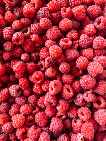 lots of ripe fruit sweet raspberries for cooking as a background