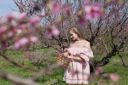 Beautiful blonde woman collects flowers in flowering garden in spring 스톡 콘텐츠