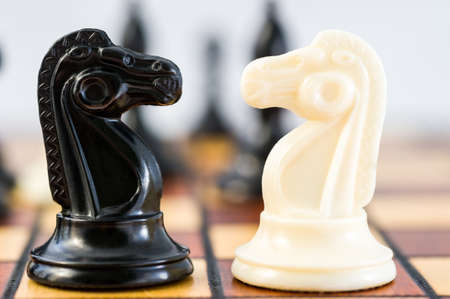 Chess pieces of a black and white knight in front of them, competition, battle, against the background of other pieces. High quality photo