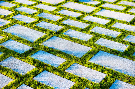 Gray concrete paving stones overgrown with green grass, environmentally friendly road, summer day.