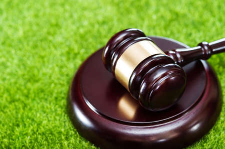 Wooden judges hammer with metal ring and soundboard, on artificial turf, top view, green grass, copy space.