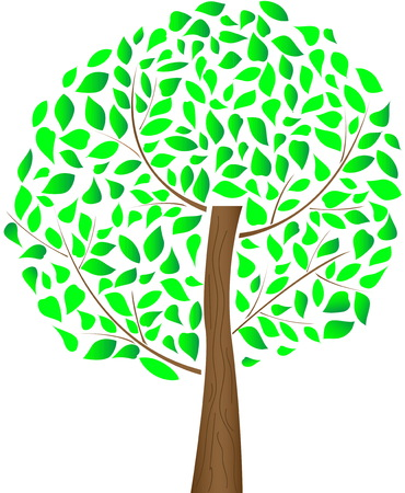 Tree with green leaves. Illustration of summer tree.