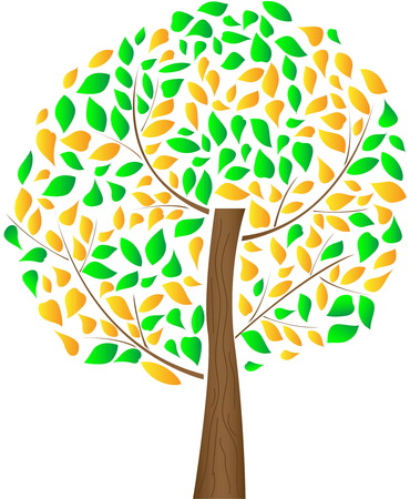 Tree with yellow green leaves.Illustration of autumn tree.