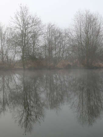 diagonale: Trees, reflections, fog and water Stock Photo