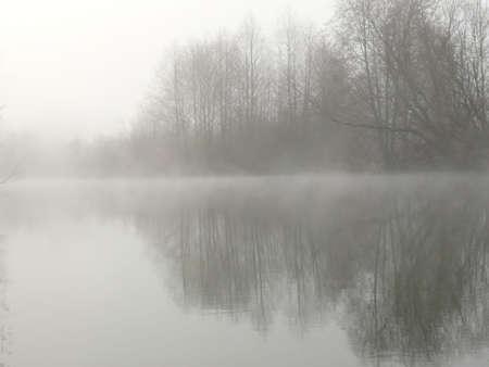 diagonale: Fog on Sammamish River near Redmond, WA, winter 2008