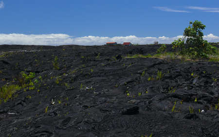 bazalt: Lava flow near Pahoa, Big Island, Hawaii Stock Photo