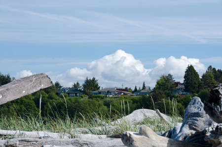 dungeness: Houses near Dungeness Spit