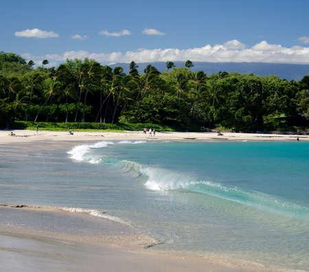 short wave: Short surf wave at Mauna Kea beach, Big Island, Hawaii