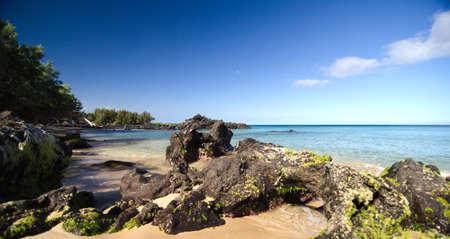 big island: Rocks near surf line of Beach 69, Waialea, Big Island