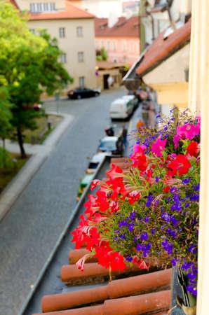 mansard: Flowers at mansard window on U Luzickeho seminare, Mala Strana, Prague Stock Photo