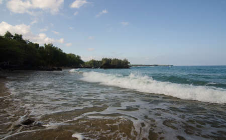 ironwood: Early waves at beach 69, Big Island, Hawaii