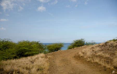 drywood: Narrow road near Hapuna beach, Big Island, Hawaii Stock Photo