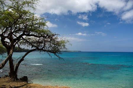 breakaway: Variety of blue colors to the south of Hapuna, Big Island, Hawaii