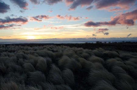 obrero: Puesta del sol sobre campo de hierba fuente al lado de la carretera Waikoloa, Isla Grande de Hawaii