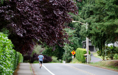 thundercloud: Runner on a residential street with Thundercloud Flowering Plum in foreground